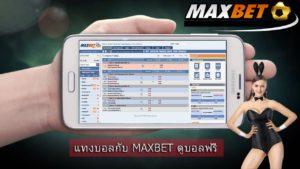 maxbat-vip-club-ibc-1