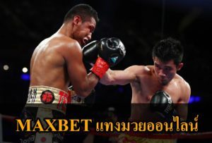 The-best-boxers-vipmaxbet-1
