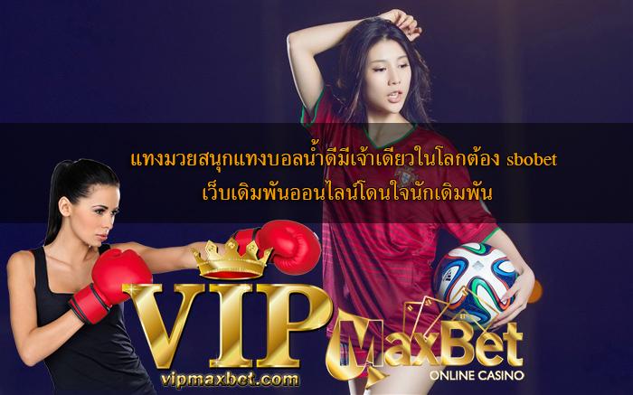 vipmaxbet-Fun Boxing Betting
